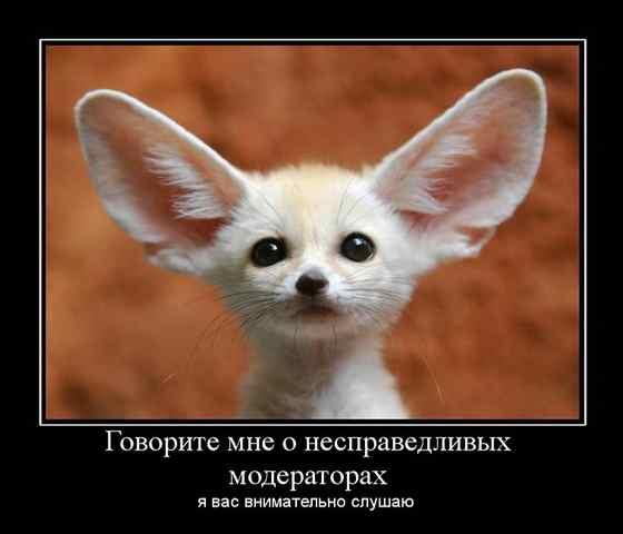 885093_govorite_mne_o_nespravedlivyih_moderatorah.jpg.d330d7135202e30d9de095109125f703.jpg